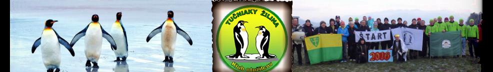 Tučniaky Žilina